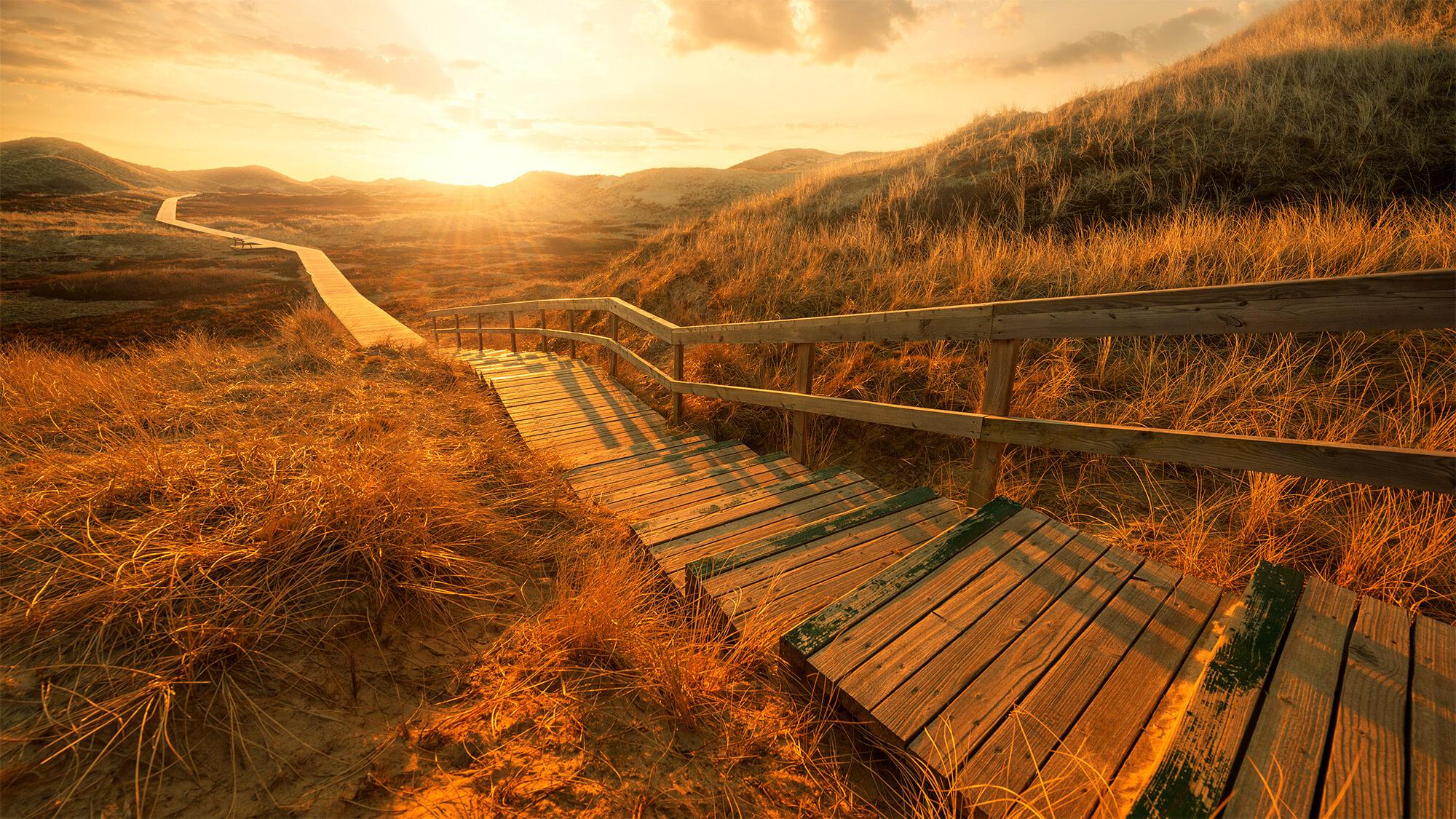 Camino hacia el éxito