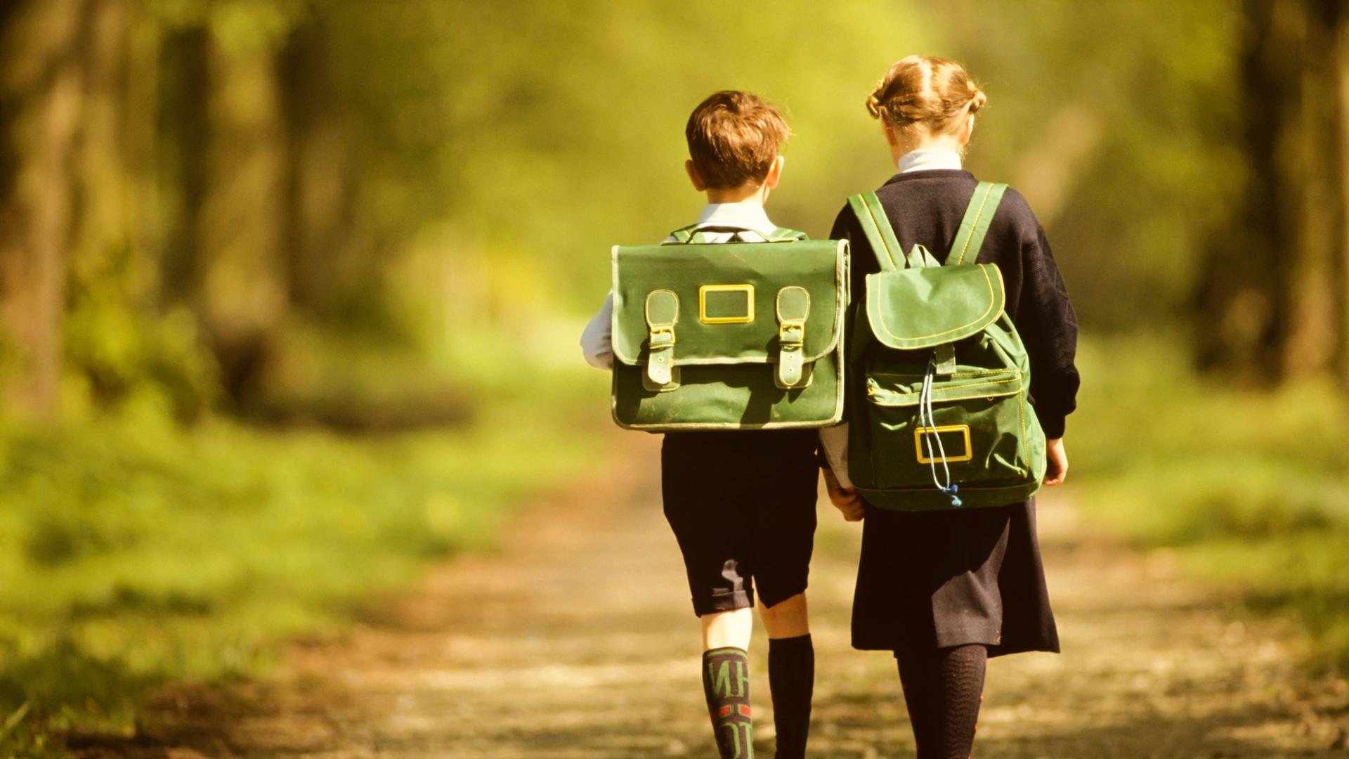 children walking down a woodland path